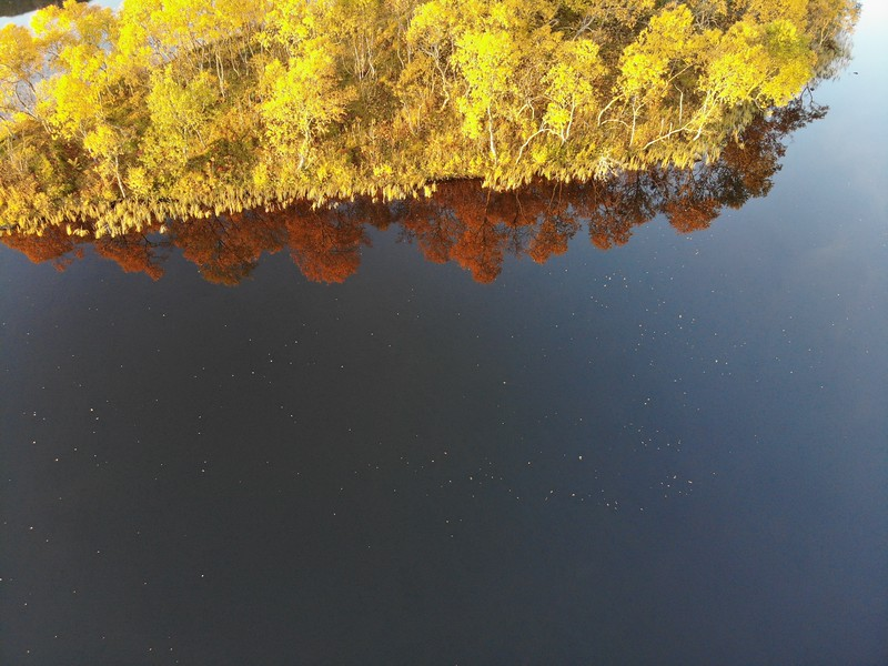 Mirror Lake in Autumn