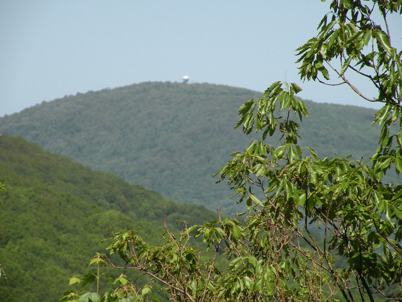 Looking from Lost Overlook on Brady Mtn back toward Black Mountain. You can see the NOAA weather dome up there.  Sorry for the blurry photo, but this is way zoomed in. Brady Mtn, CT TN