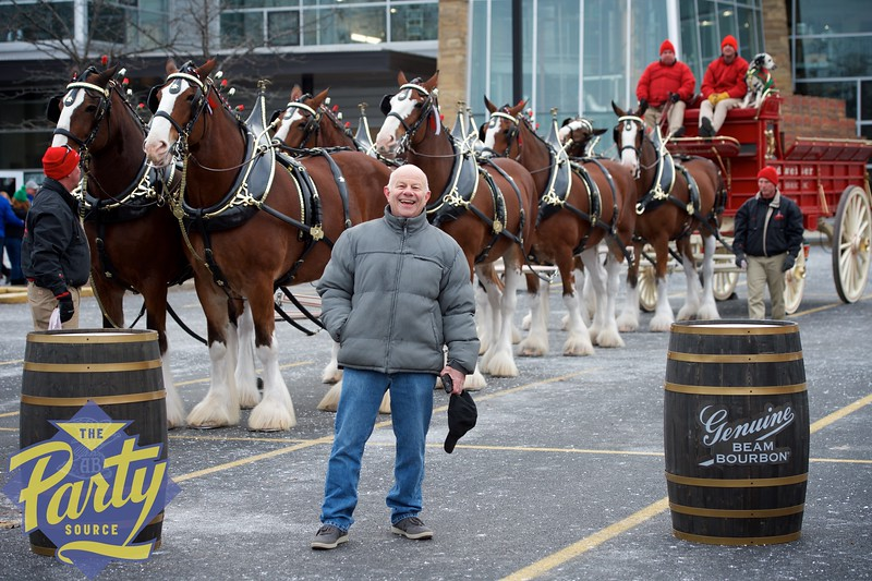 Clydesdale Portraits 12.jpg