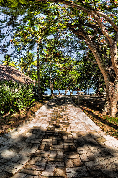 Path along the Bures - Castaway Island Resort - Mamanuca Archipelago - Fiji