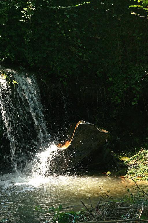 Small Waterfall near Montgomery, WV.