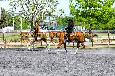 Open Ranch Horse Rail Pleasure 05/23/21