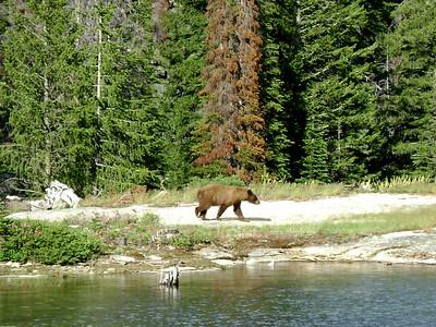 Big Creek Lake - 2009
