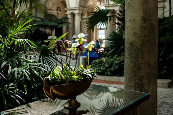 Visiting Vizcaya Museum,  Miami, Fl.