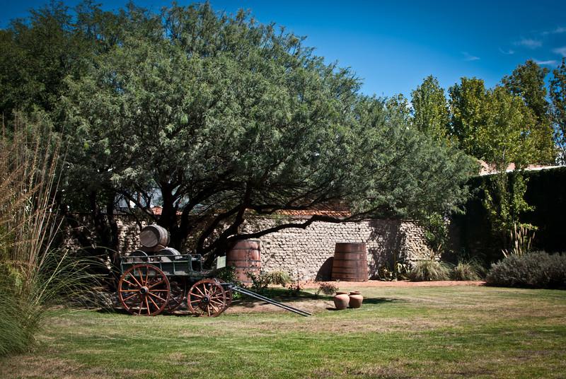 Cafayate 201203 El Porvenir Wine (2).jpg