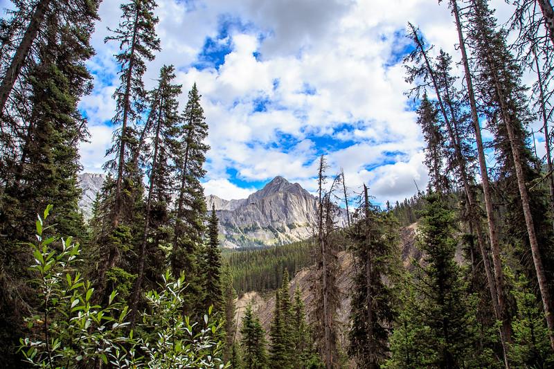 Banff, Alberta Canada 2019-2317.jpg