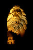 Statue of lion at night