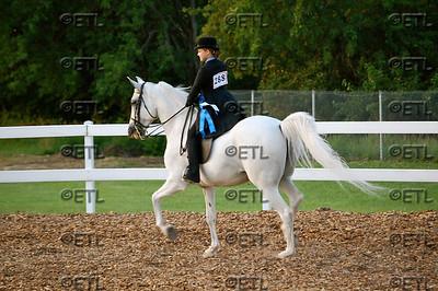 Longview Charity Horse Show 2011