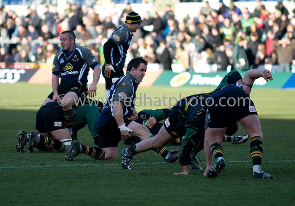 Northampton Saints vs Toulon, European Challenge Cup, Franklin's Gardens, 24 January 2009