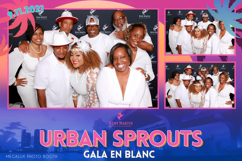Urban Sprouts Gala En Blanc Remy Martin Prints
