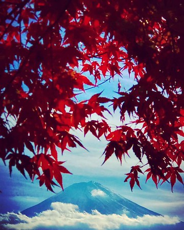 Japan, Tokyo, Mt. Fuji