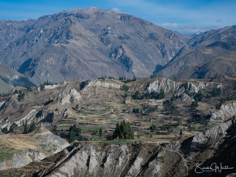 Peru-15102019-289.jpg