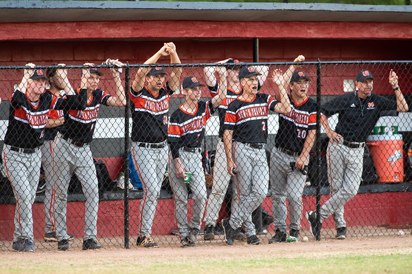 NDHS Baseball vs Ledford Conference Championship