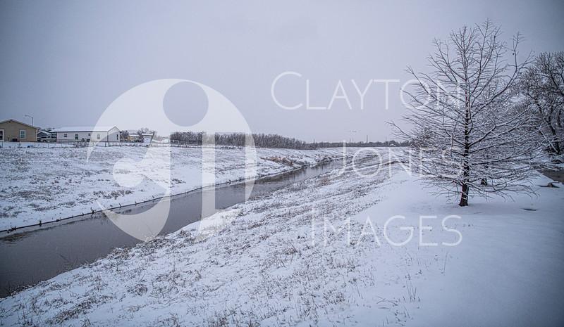 wf_backyard_snow_29.jpg
