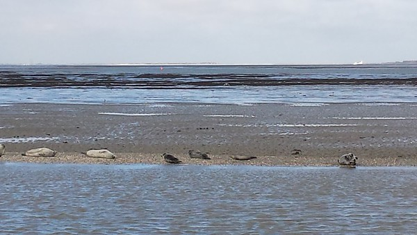 2013_09 Die Küste
