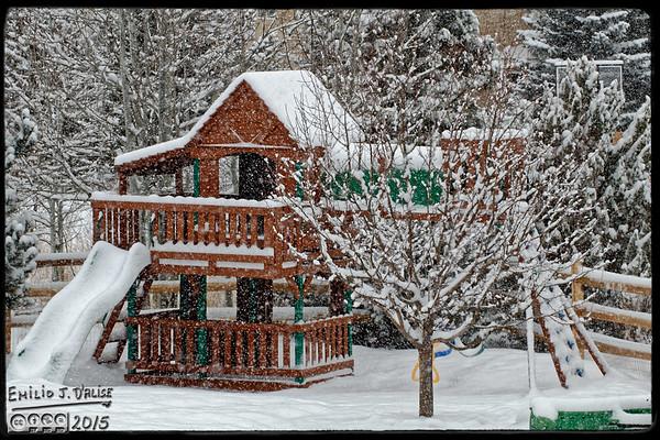 January 2015 Snow