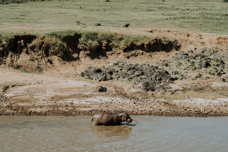 Tu-Nguyen-Destination-Wedding-Photographer-Kenya-Masai-Mara-Elopement-Doris-Sam-300a10.jpg