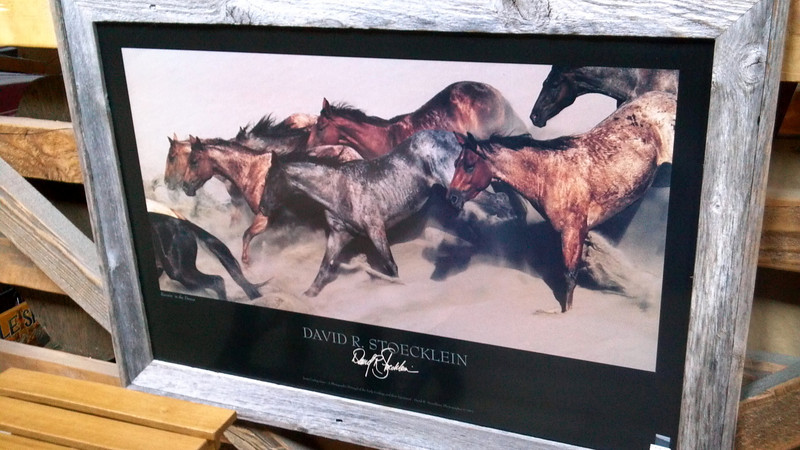 Loved this picture of mustangs running in the desert I saw in Frisco.