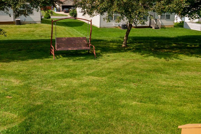 backyard (12).jpg