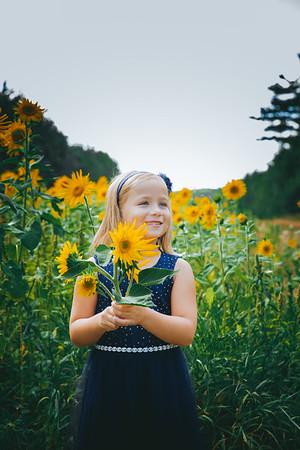Sunflowers Kangas