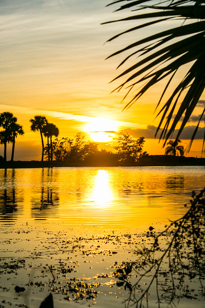 111219_sunset_nowm-1.jpg