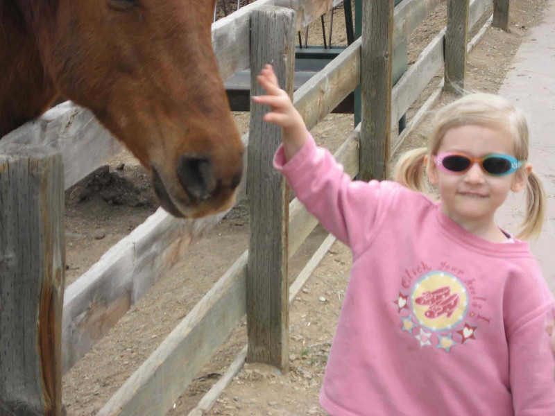 Farm Bella petting a horse.jpg