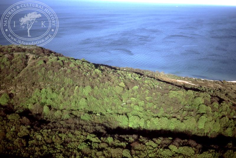 Stenshuvud - prehistoric remains (4 May, 1989). | LH.0668