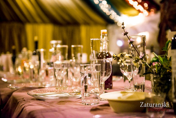 Tu B'Shevat Seder 2014
