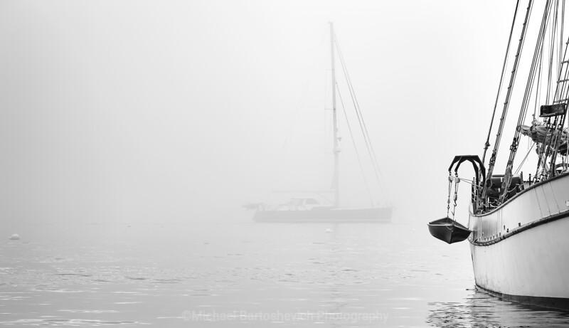 Acadia Batch 2-19.jpg