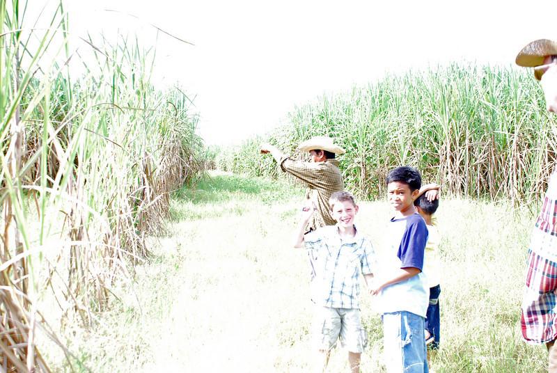 Pictures 08 10-07-08 thru 11-14-08 112_edited-1.JPG