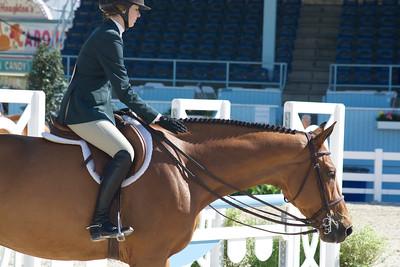 Devon Horse Show picture