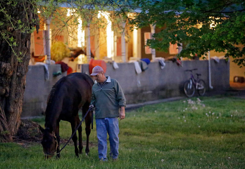 . A hot walker takes a horse out grazing at Churchill Downs Monday, April 29, 2013, in Louisville, Ky. (AP Photo/Morry Gash)