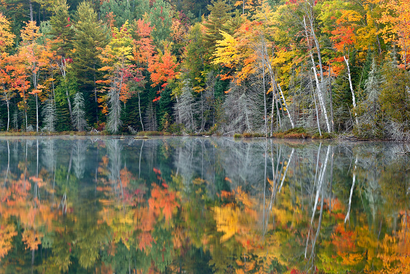 Reflecting Fall - Red Jack Lake (Hiawatha National Forest - Upper Michigan)
