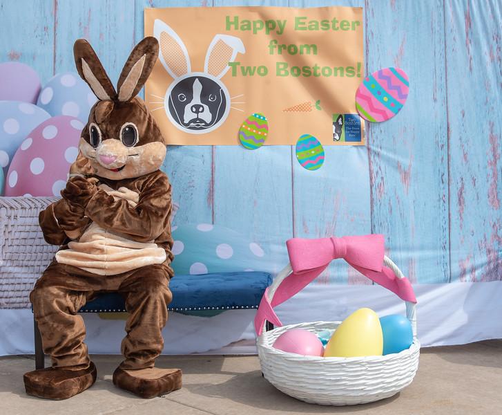 Easter2019TwoBostons-8276.jpg