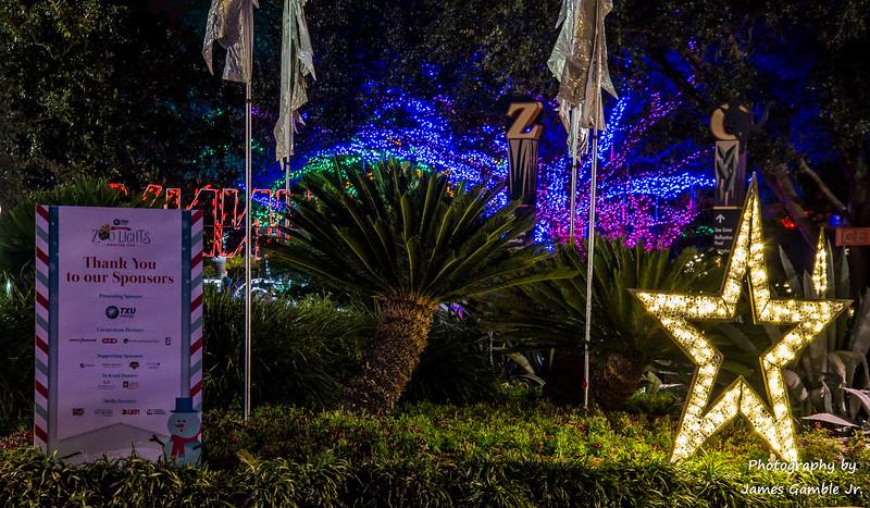 Houston-Zoo-Lights-2842.jpg