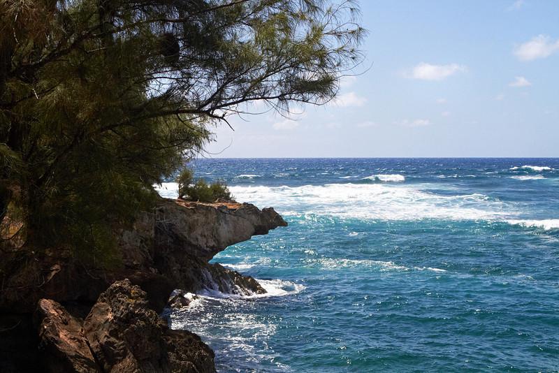 Hawaii914.jpg