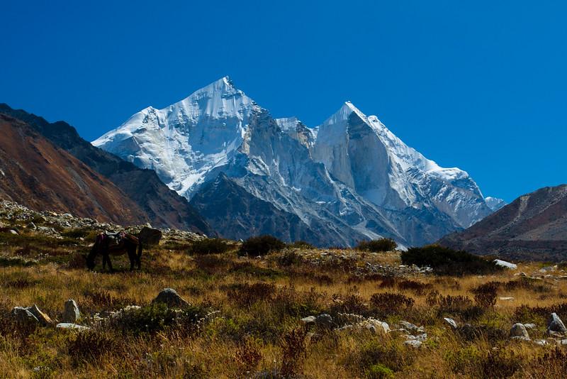 Himalayas 335.jpg
