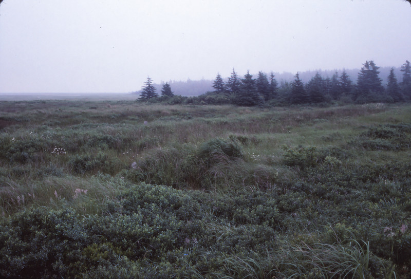 Nova Scotia 1983 - 150.jpg