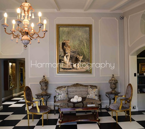 Harmoni Photography Best Sellers 2020 (scroll down)