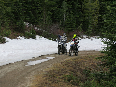 Greenwater Area Forest Roads June 15, 2014