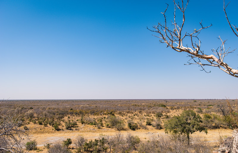 Botswana_June_2017 (4740 of 6179).jpg