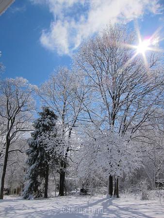 Last 2013-2014 Winter Snow Storm