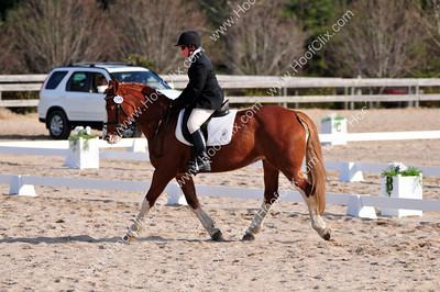 2010-02-21 USEA Horse Trial