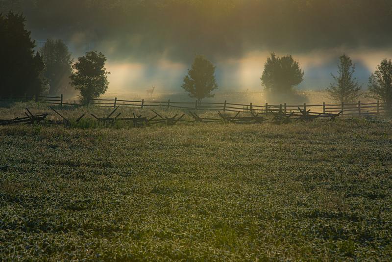 Gettysburg-2275.jpg