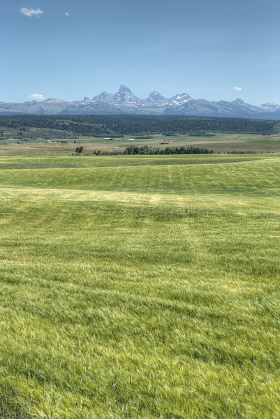 The Teton Range of Wyoming as seen from the agricultural fields of Idaho