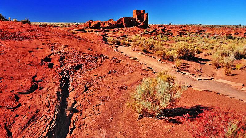Arizona Day 3 11-03-2010 46.jpg