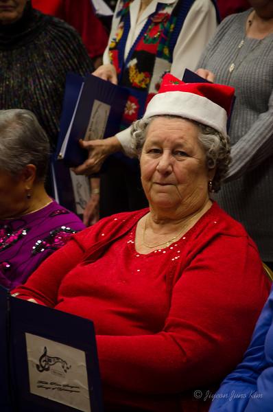 USA-Fallsrun-Christmas-7110.jpg