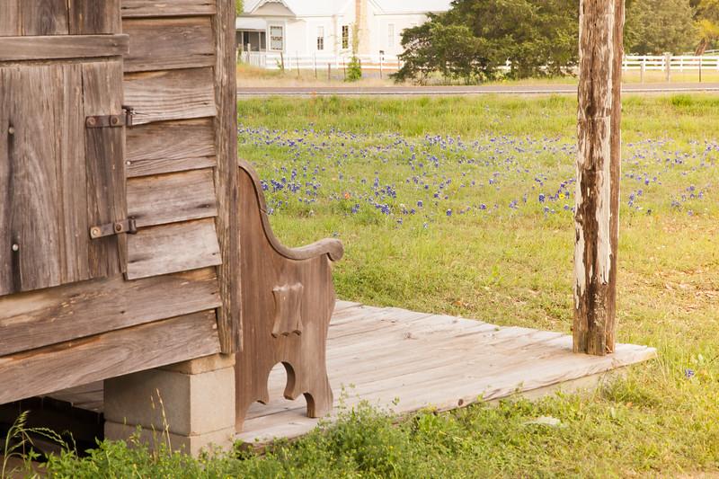 2015_4_3 Texas Wildflowers-8164-2.jpg