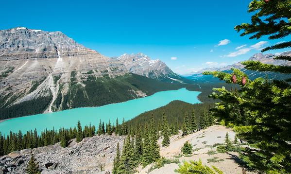 Peyto Lake, Rocky Mountains, Alberta, Canada