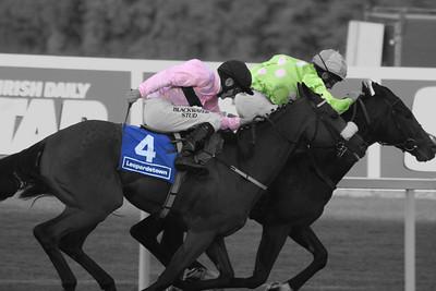 Leopardstown Horse Race